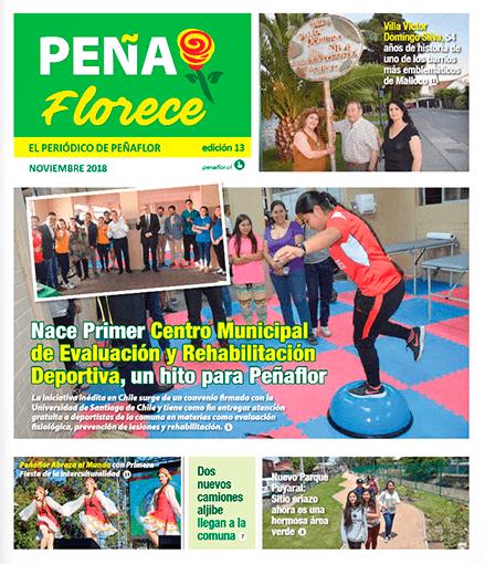 periódico Peñaflorece Noviembre 2018
