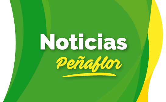 noticias peñaflor
